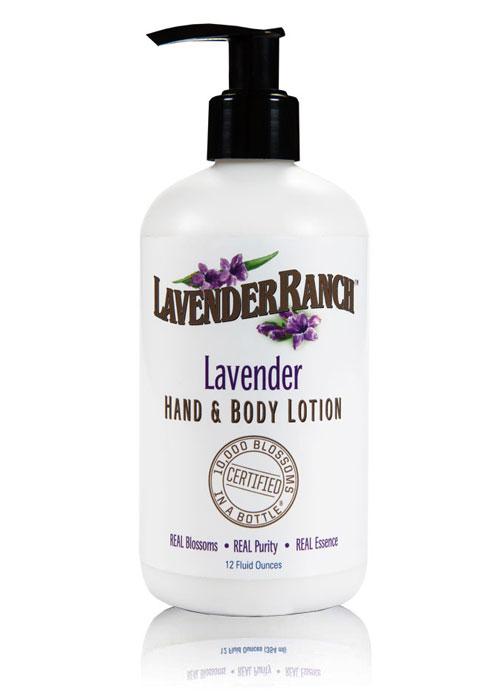 Lotion-Lavender